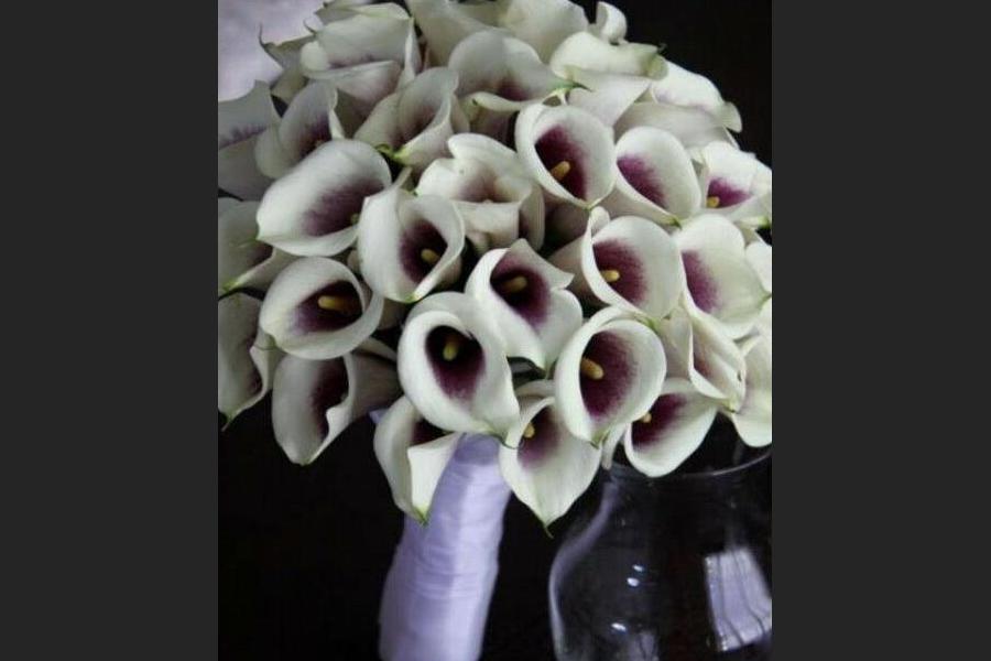 10_professional_event_stylist_floral_designer_clear_lake_league_city_pasadena_houston_texas